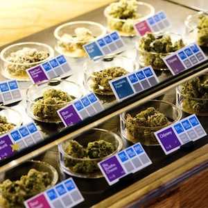 buy medical marijuana You Can? How To Buy Medical Marijuana At Dispensaries