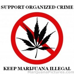 marijuana legalities-2