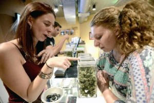 budtender training