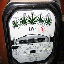 medical marijuana electricity