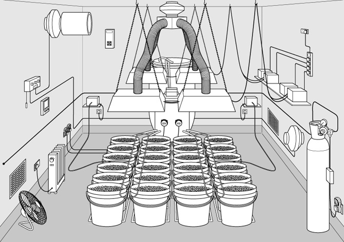 grow room - Basement Grow Room Design