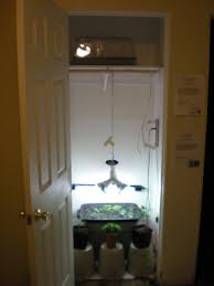 basement grow room design. Basement Grow Room Design Fascinating 10 Steps To Setup Your Marijuana Decorating B