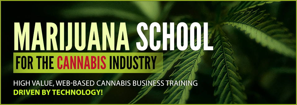 Marijuana Business Training