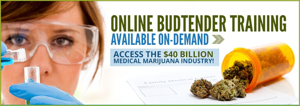Online Budtender Training and School