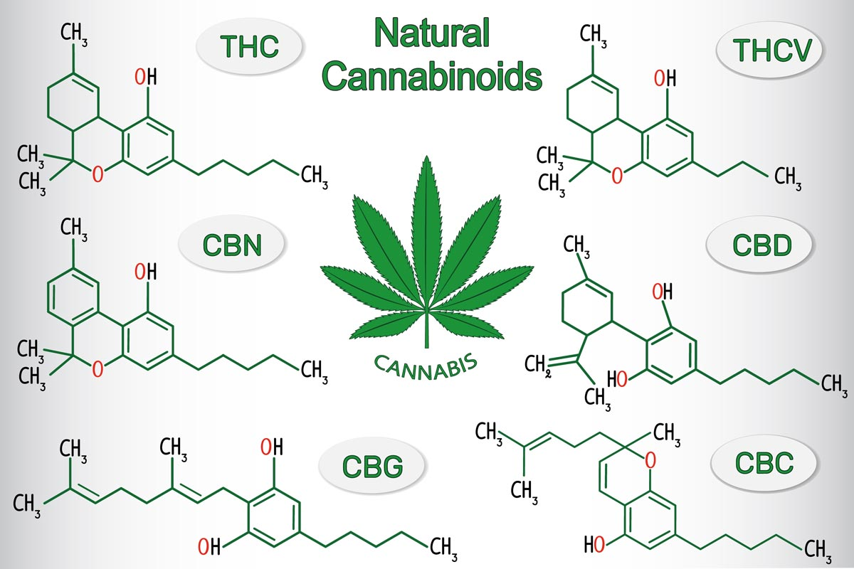 CBG (Cannabigerol): Uses, Benefits, Side Effects and More